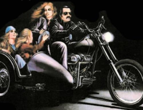 6. Harley Davidson GespannTreffen